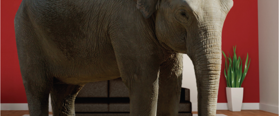Pricing transparency is the elephant in the room issue for non-bank SME lenders.